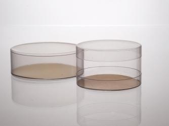 Clear Plastic Bases & Lids